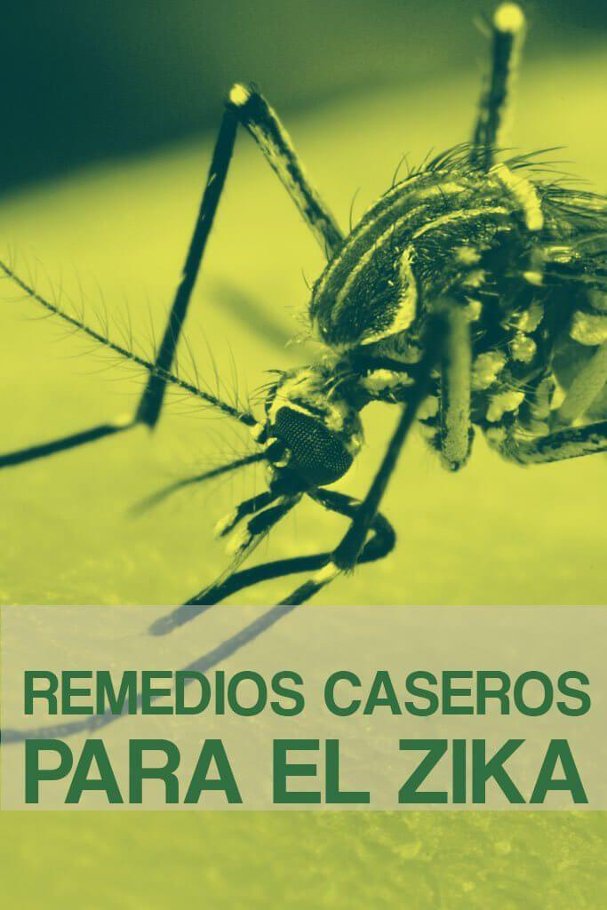 ¿Qué es el zika? Es una enfermedad trasmitida por medio de la picadura de un mosquito, específicamente el Aedes aegypt