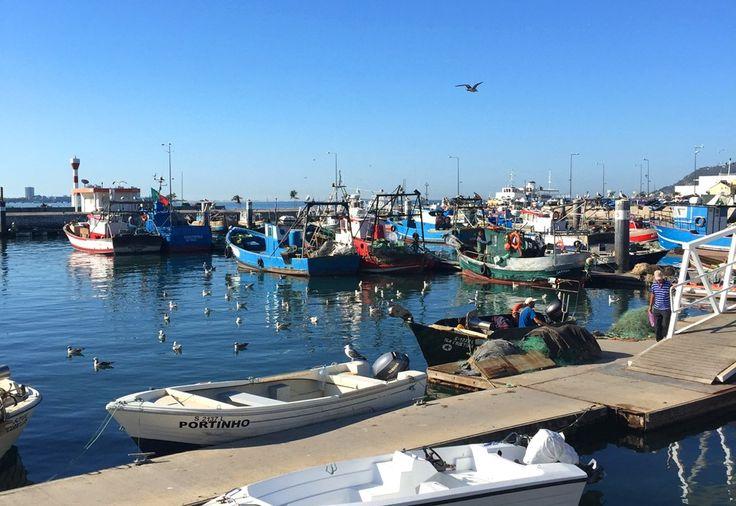 Portugal / Fischerei in Setubal