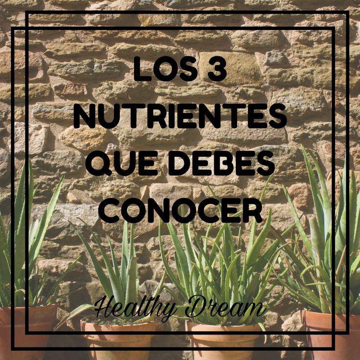 Para empezar bien, se debe empezar desde el principio. Los alimentos que consumimos están formados por componentes no nutritivos y por nutrientes, sustancias útiles para el organismo.