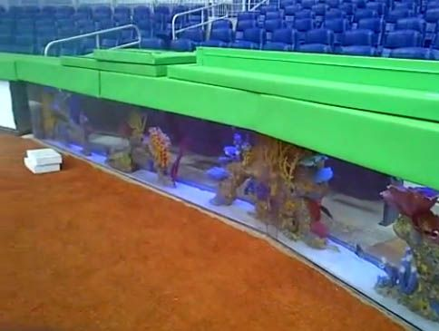 23 best best ballparks images on pinterest baseball park for Marlins fish tank