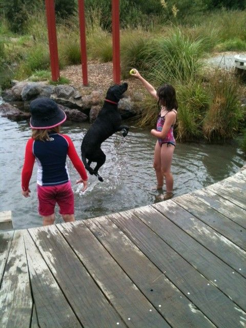 Olivia and Alex cooling off with their dog Indi at Redwood Springs  #christchurch #pictureourcity
