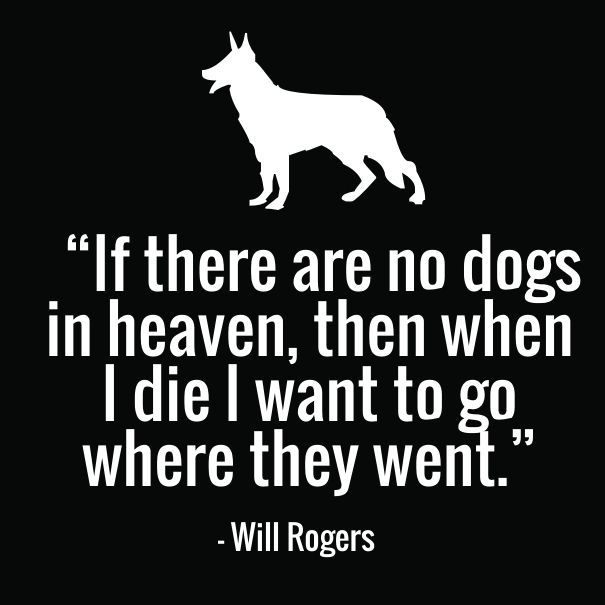 Will Rogers never saw All Dogs Go to Heaven
