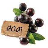 """De acai bes (gespeld açaí) is de vrucht van de acai palmboom. Er zijn acht verschillende acai soorten die uit Centraal en Zuid-Amerika stammen.  De naam acai is de Portugese aanpassing op het woord ïwaca'I, wat in het Tupian weer betekent """"de vrucht die water huilt of uitstoot."""""""