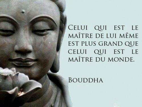 Top Les 25 meilleures idées de la catégorie Citations bouddhistes sur  MV82