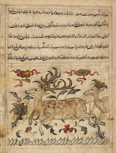 From a dispersed copy of a medical text titled Manafi al-Hayavan (On the Uses Derived from Animals); a Christian doctor who was a court physician to the Abbasid caliph in Baghdad wrote the original in Arabic in a.d. 941. In the late thirteenth century, the Mongol ruler of Iran and Iraq, Ghazan Khan, ordered a copy of the Manafi to be translated into Persian. Because this leaf was copied from that volume shortly after the Mongol conquest of Persia, there is a strong Chinese influence.