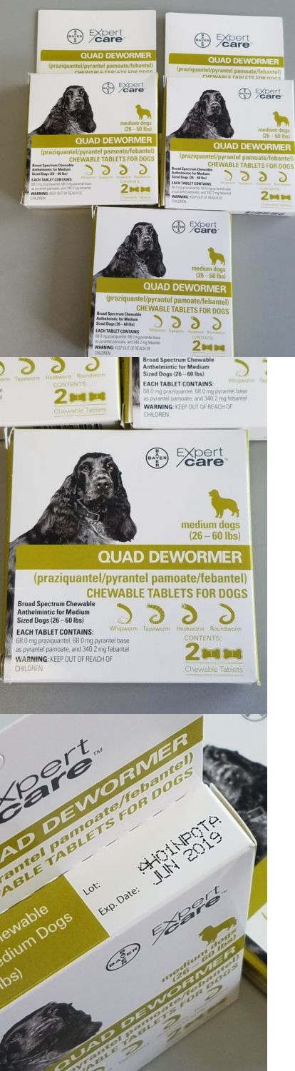 Wormer Products 117432: Bayer Expert Care Quad Dewormer Chewable 6 Tablets For Medium Dogs - 06 2019 -> BUY IT NOW ONLY: $34.99 on eBay!