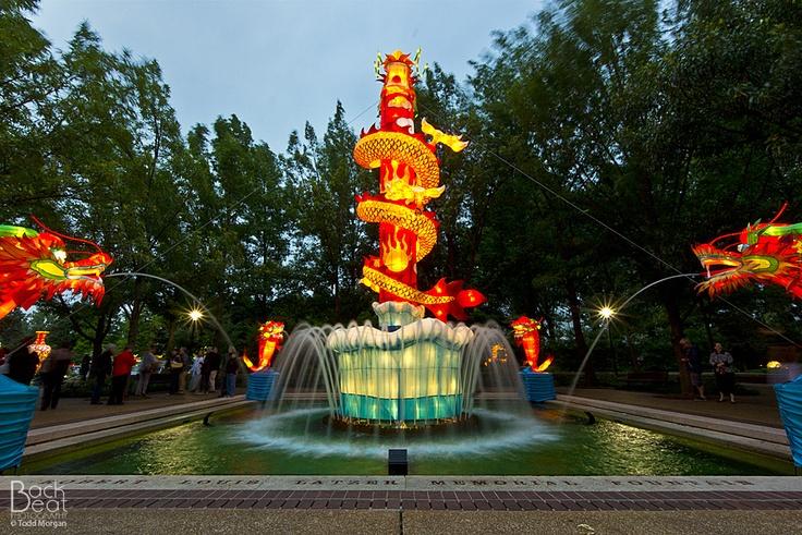 59 Best Lantern Festival Art By Day Magic By Night Images On Pinterest Lantern Festival