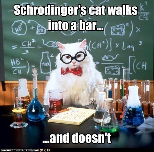 MemeCats: Chemistry Cat Strikes Again