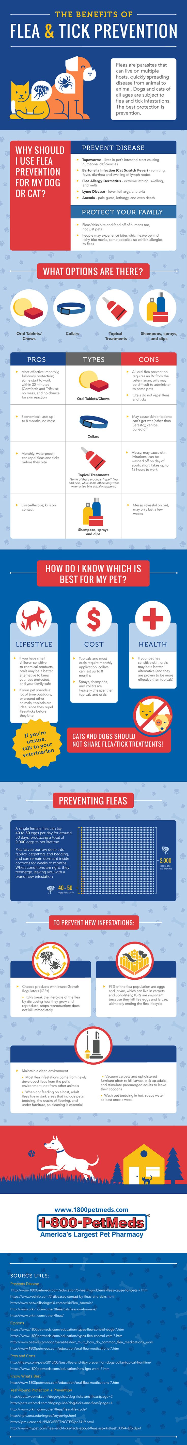 [Infographic] Which Flea and Tick Prevention Product is Best for Your Pet?