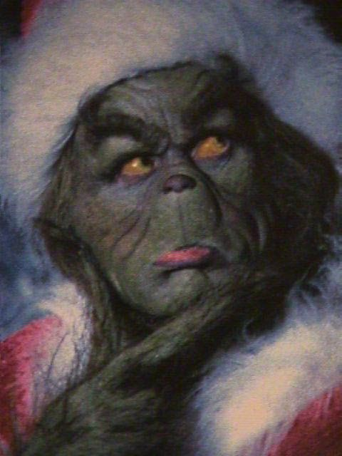 24 best images about The Grinch on Pinterest   The grinch ... Taylor Momsen Partner