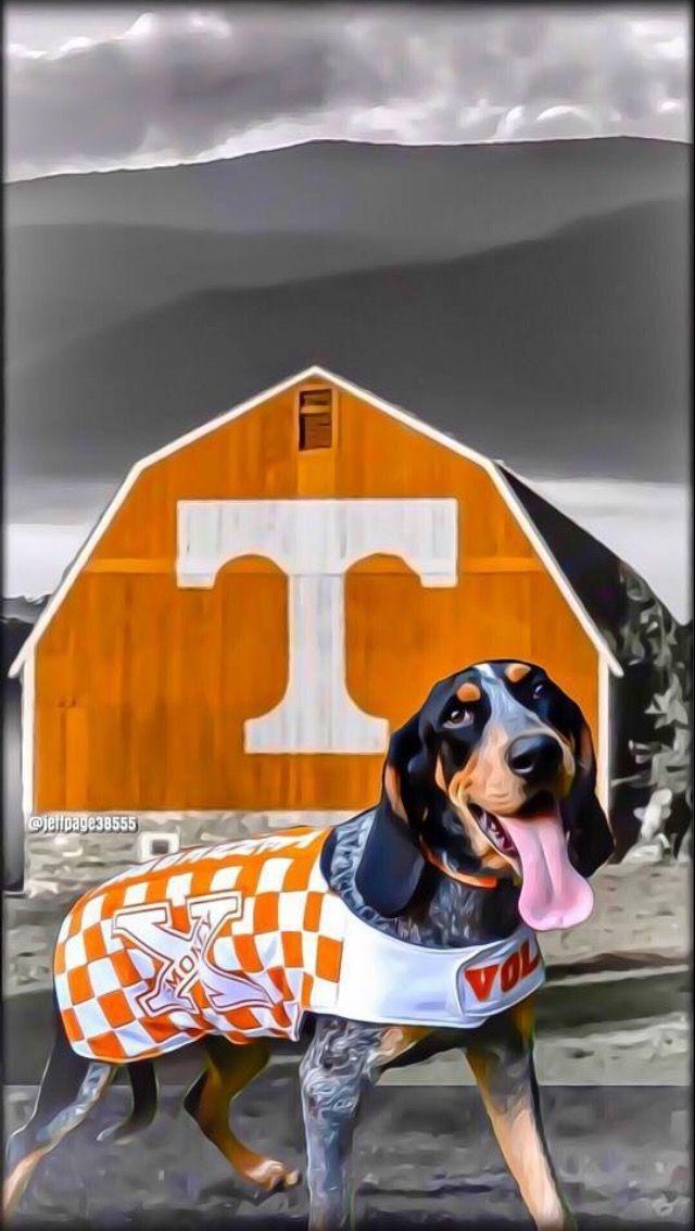 Great Tennessee Volunteers