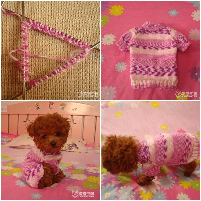 DIY Knitted Dog Sweater