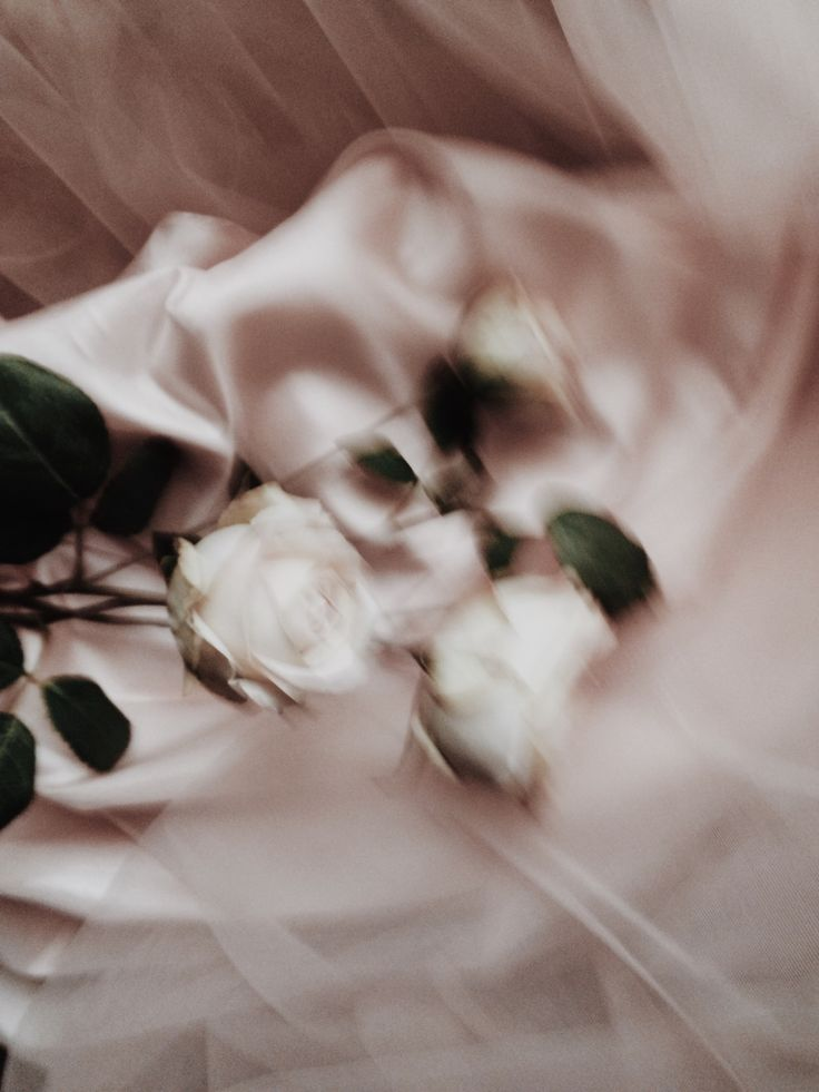 im my forever enchanted garden wild beasts are tamed with the sound of  growing roses