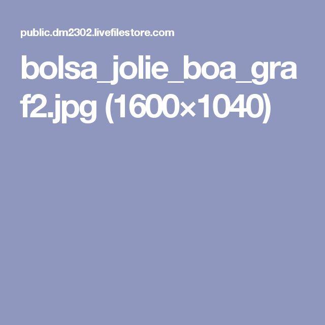 bolsa_jolie_boa_graf2.jpg (1600×1040)