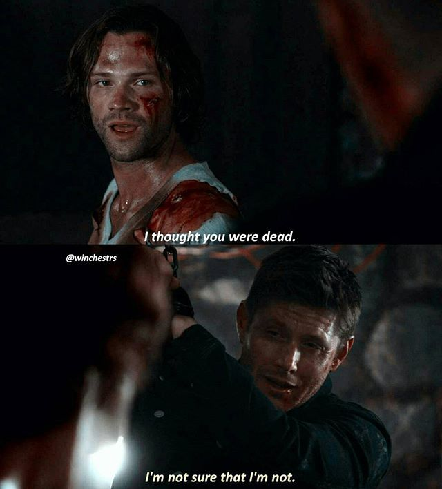 [12.02] SAMMY WAS SO HAPPY TO SEE DEAN AGAIN BLESS. Qotd: What's the last song you listened to? . . . #supernatural #spn #spnfamily #fandom #cw #jensenackles #jaredpadalecki #mishacollins #spncast #spnscene #deanwinchester #samwinchester #castiel #cas #akf #marywinchester #samanthasmith #samsmith #season12 #destiel