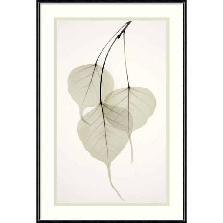 Artist: Albert Koetsier Title: Bo Tree Framed Art Print Product type: framed print