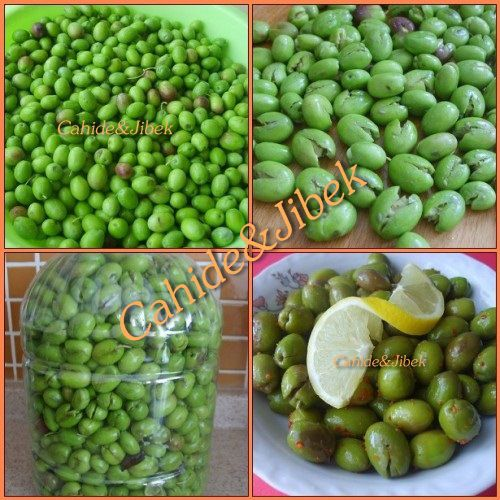 Kışlık zeytin yapımı