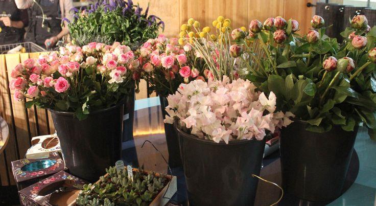 #Clayrtonsacademy  Merci à FleuraMetz pour les fleurs.