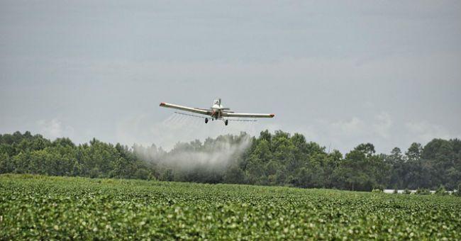 Pesticidi: UE mette al bando diserbanti dannosi per sistema endocrino