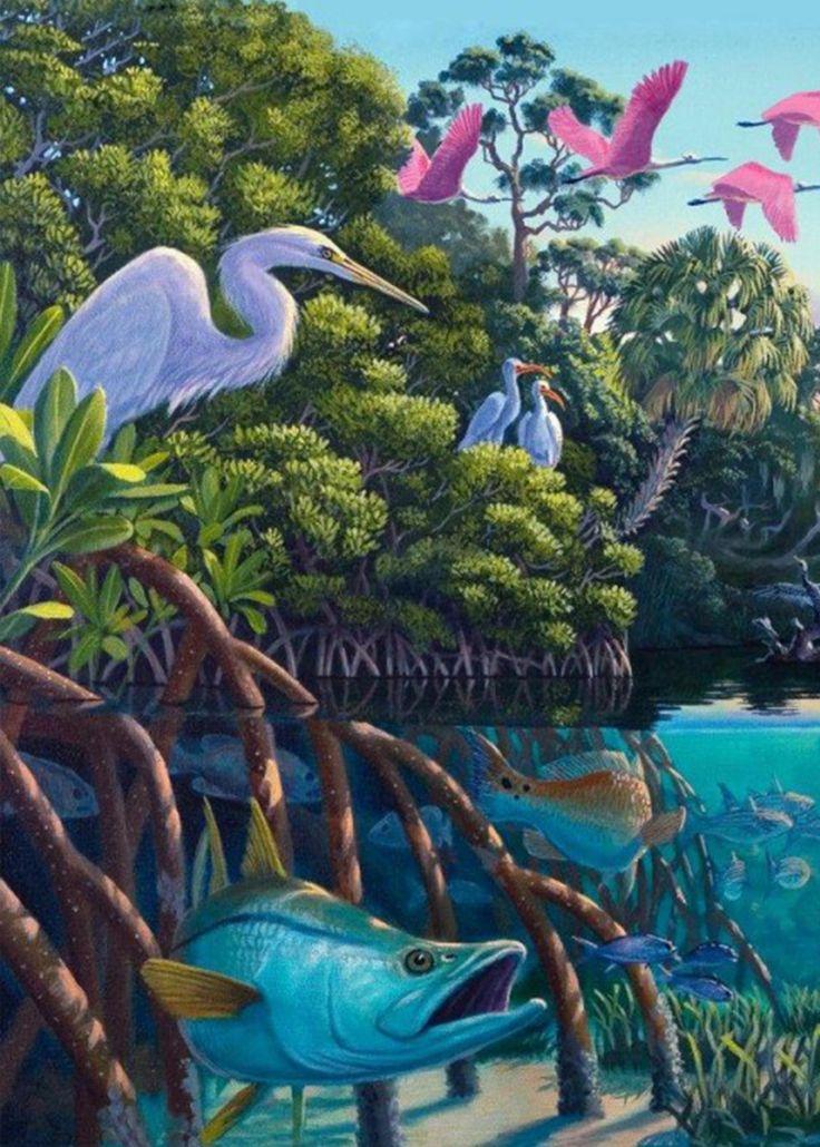 'Great Manatee River'.  Florida's incredible marine ecosystem. #manatee #manatees #freewallpaper #digitaldownloads #freewallpaper #wildlife #floridawildlife