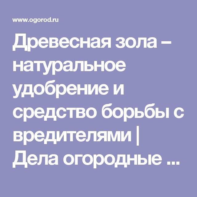 Древесная зола – натуральное удобрение и средство борьбы с вредителями | Дела огородные (Огород.ru)