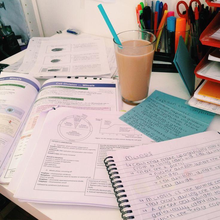 long 3500 word essay