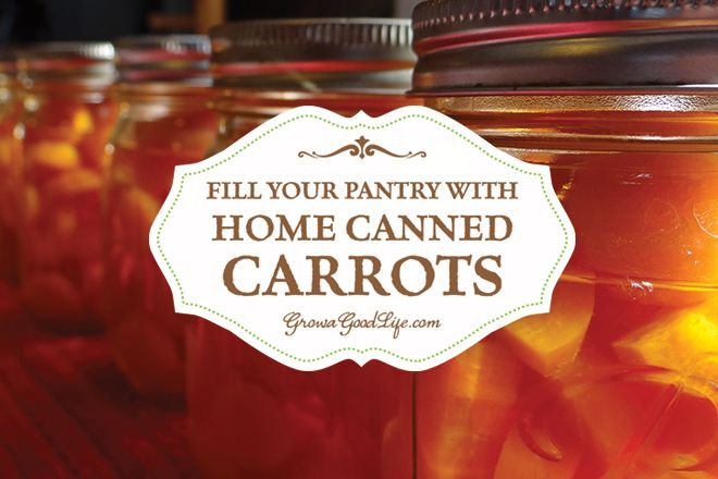 Fill Your Pantry with Home Canned Carrots | Grow a Good Life
