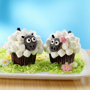 Shaun the Sheep cupcakes! T-man would flip! Maybe for Easter or birthday... :)