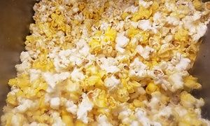 Groupon - Gourmet Popcorn or a One-Gallon Tin of Popcorn at Doc Popcorn - Broadway Mall (Up to 50% Off) in  Broadway Mall. Groupon deal price: $21