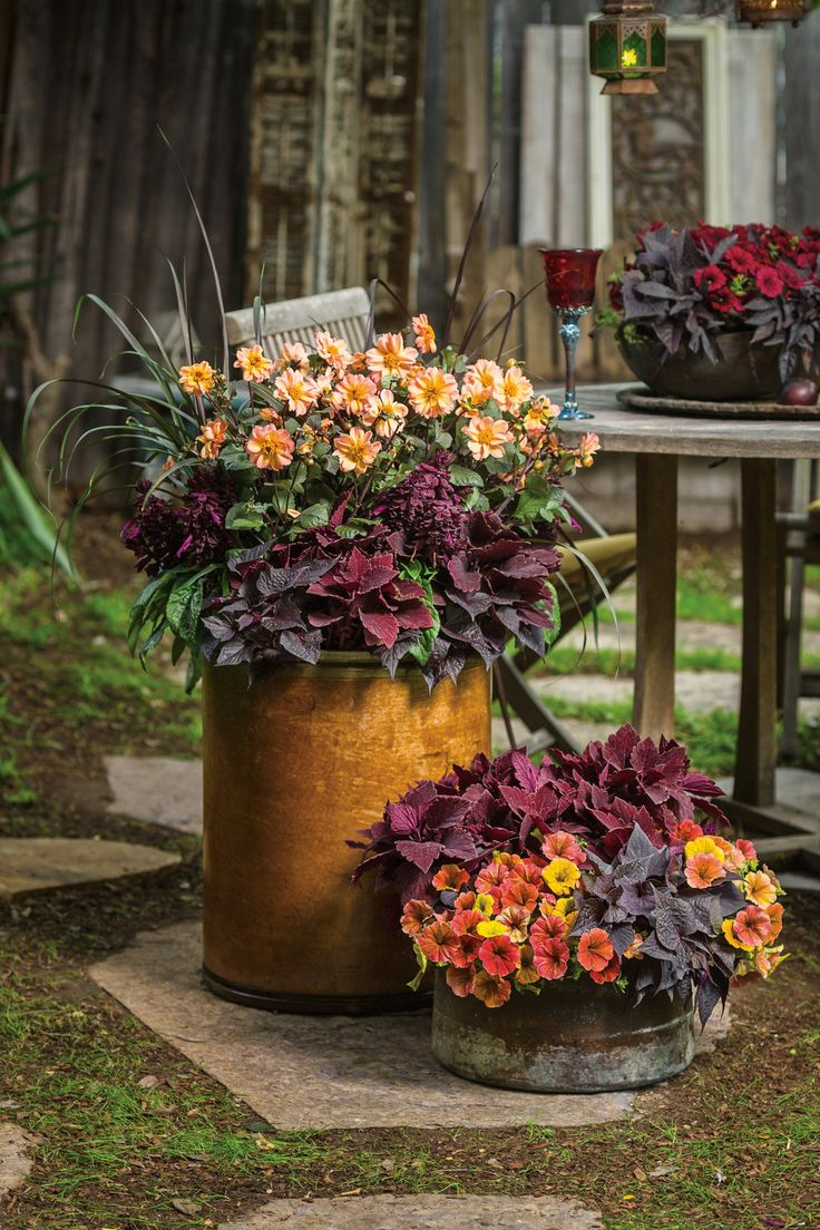 Think outside of the traditional garden container, and repurpose items that have character and texture. Add beautiful accents and deep colors and what was old is new again!