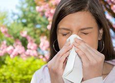 3 remédios caseiros para tratar alergias