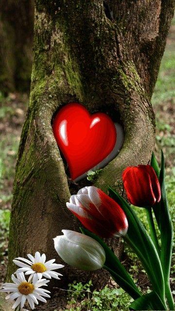 """""""Et nous ferons de chaque jour Toute une éternité d'amour Que nous vivrons à en mourir."""" Georges Moustaki (Paroles de la Chanson : Le métèque)"""
