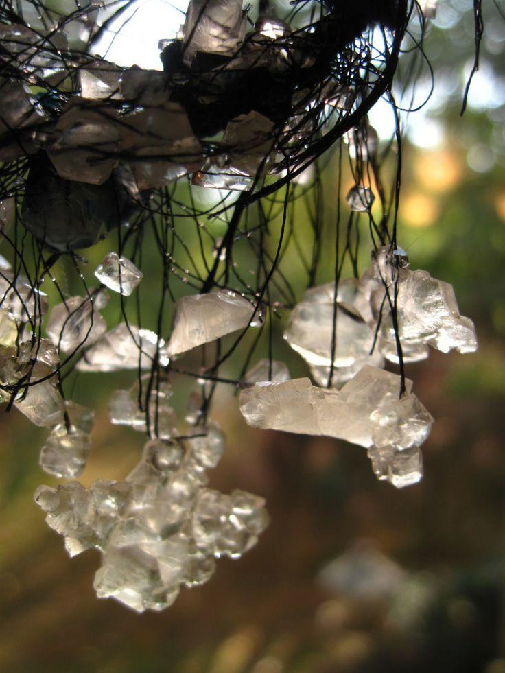 Diy Borax crystals