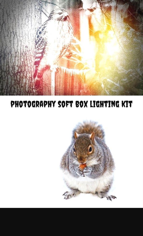 photography soft box lighting kit_454_20180719080056_31