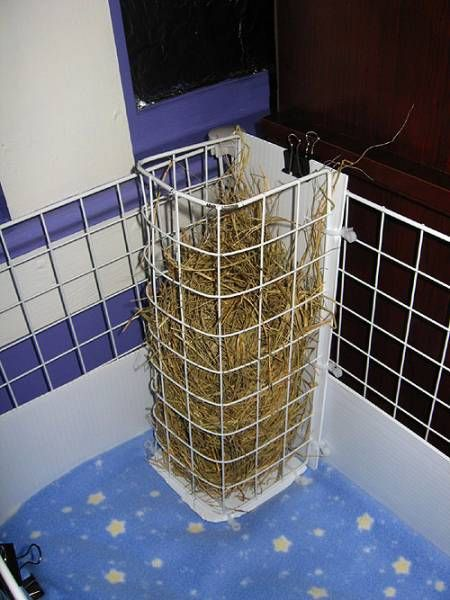 39 best hay rack litter box ideas images on pinterest for Making a c c cage