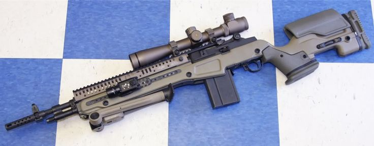 M1a with VLTOR CAS-M1AT extended rail system and custom stock.