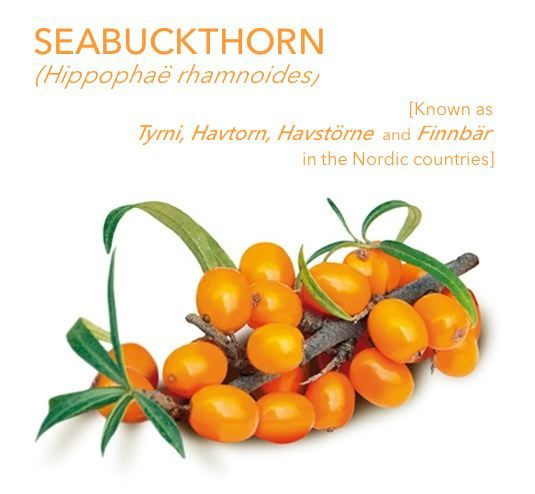 Introducing #Seabuckthorn
