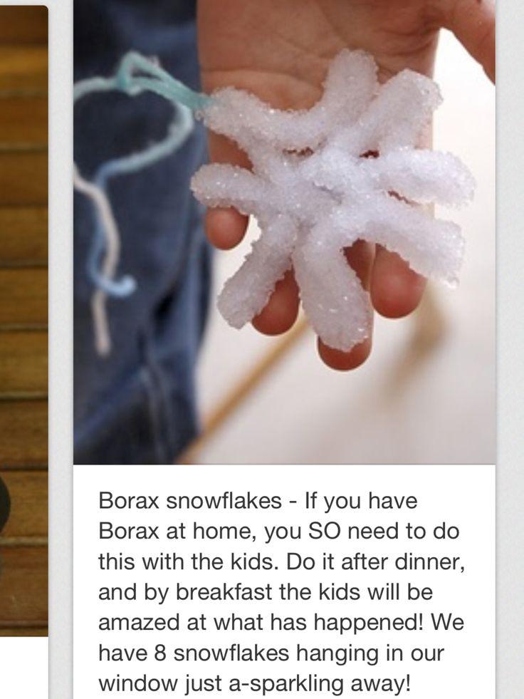 Winter Craft, Borax snowflakes