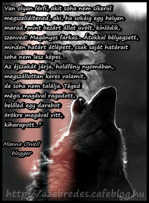 Magányos farkas - megszelídíthetetlen férfi Írta: Manna OWell magyar blogger  Teljes poszt itt: http://azebredes.cafeblog.hu/2014/11/13/maganyos-farkas/