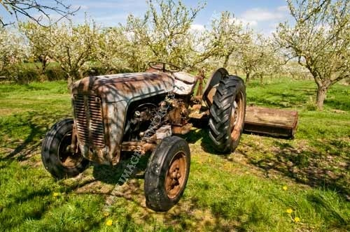 Massey Ferguson In Springtime U Think My Tractors Sexy