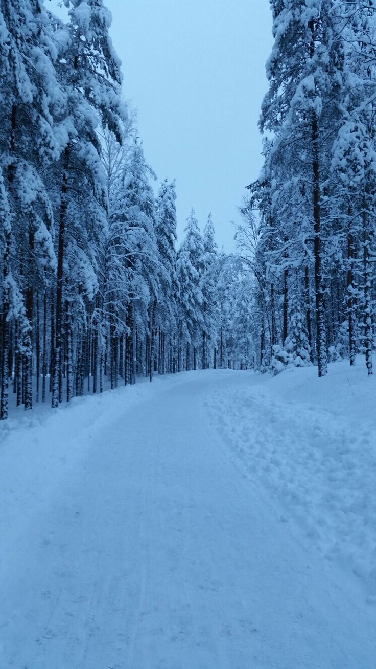Not bad for walking though it is getting soon dark. South east Finland Feb 2015.