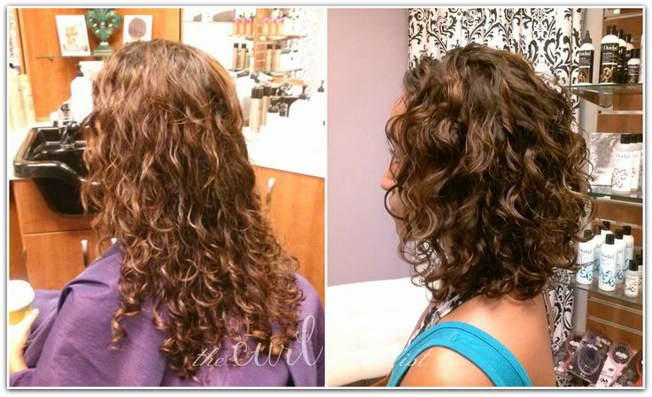 best curly hair styles for best 25 hair cutting techniques ideas on hair 4103