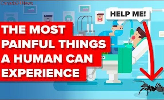 Most Painful Things A Human Can Experience
