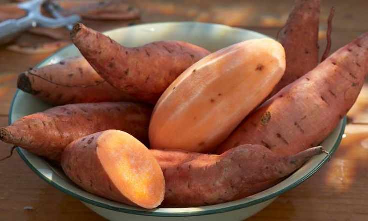 Vegane Rezepte mit Süßkartoffeln