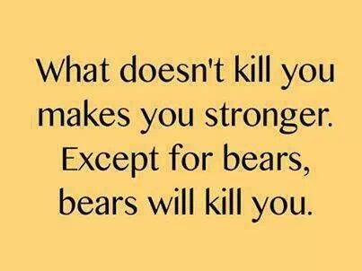 What Doesnt Kill You Makes Stronger Except Bears Will