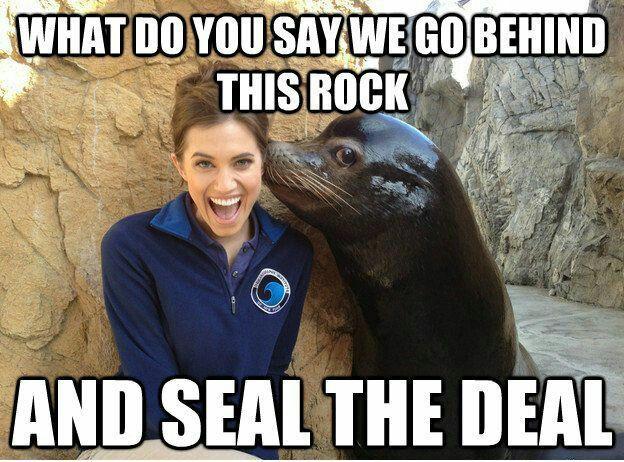 Funny Meme Pick Up Lines : Best pick up lines images pick up lines funny