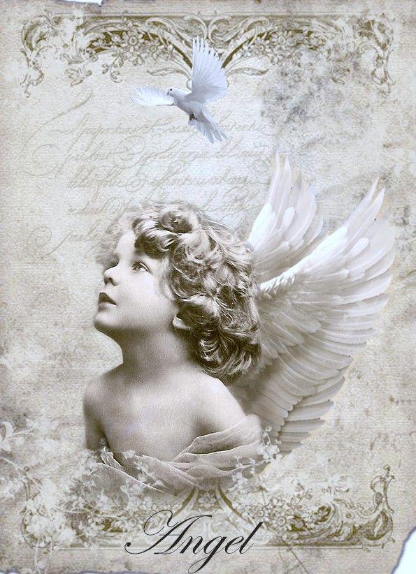 Vintage angel Digital collage p1022 Free to use <3