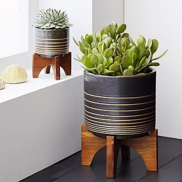 Mid-Century Turned Leg Tabletop Planters - Black/Gold