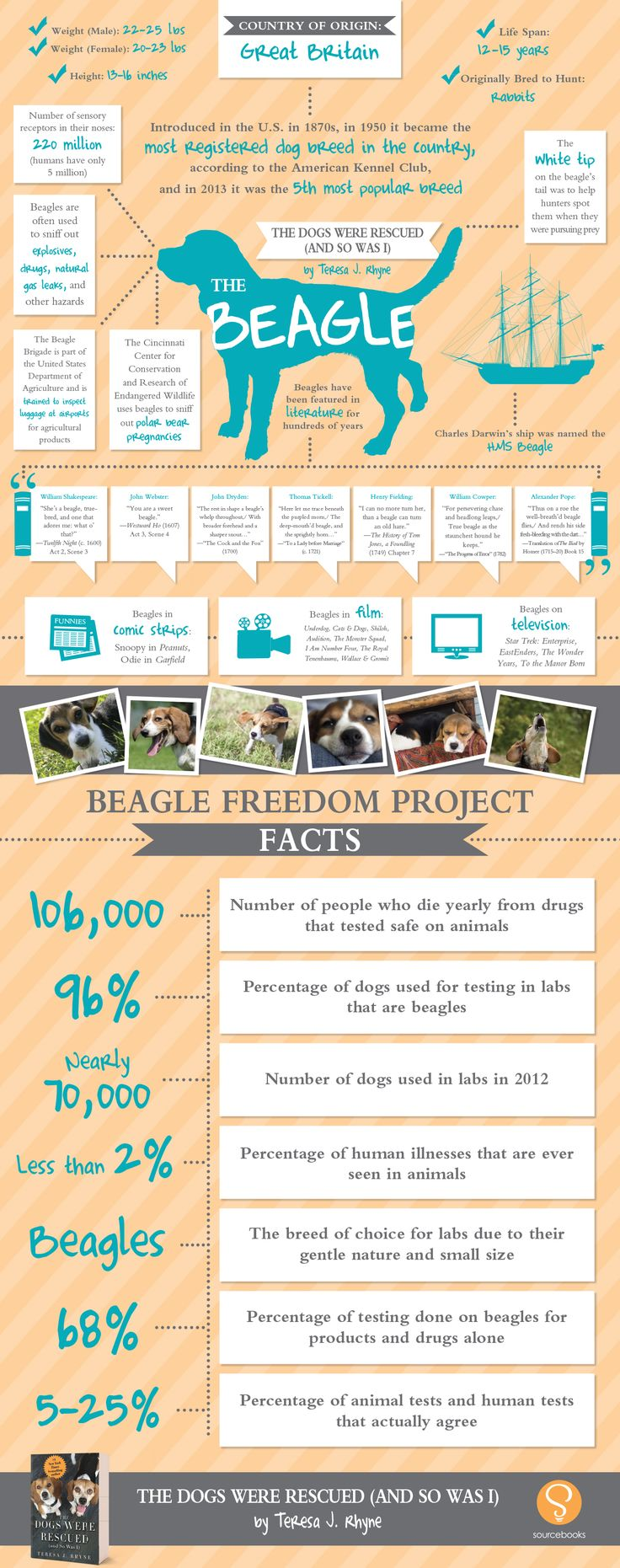 Beagle Fact Sheet @beaglefreedom The Dogs Were Rescued (and So Was I) by Teresa J. Rhyne (October 2014)