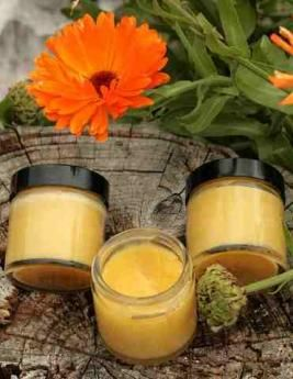 Calendula salve, a traditional healing ointment, great for take along first aid.